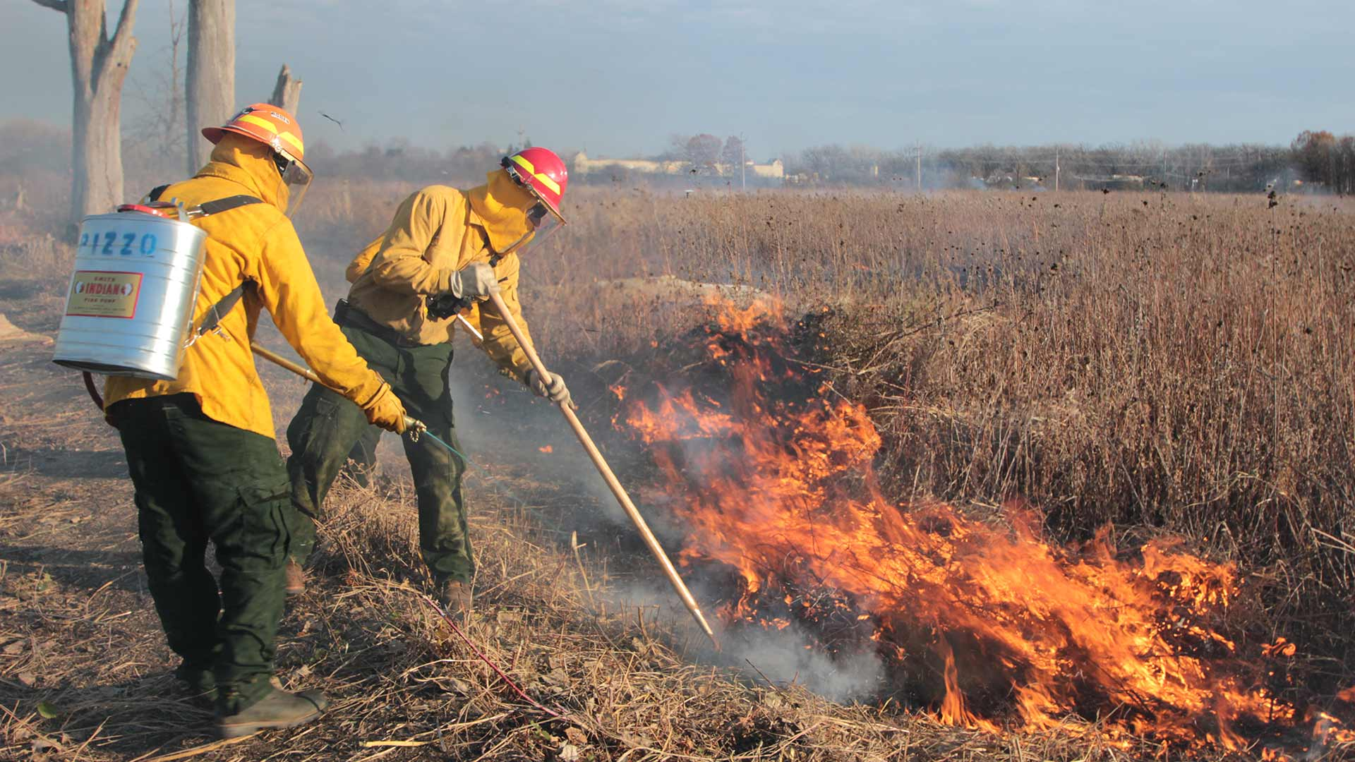 Prescribed fire services performed in a natural area near Lake Forest, IL.