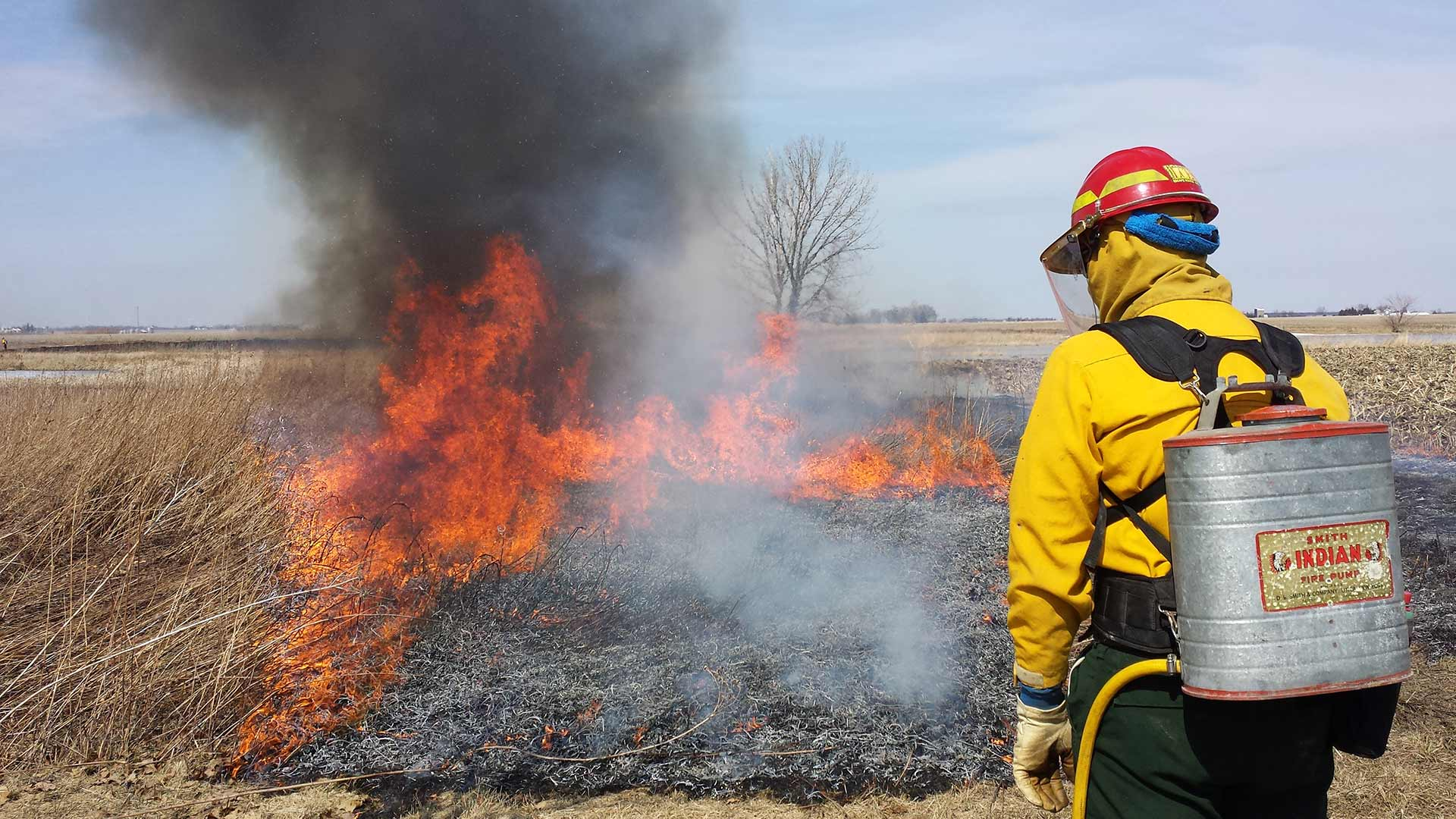 Prescribed fire burn for natural land management in Barrington, IL.