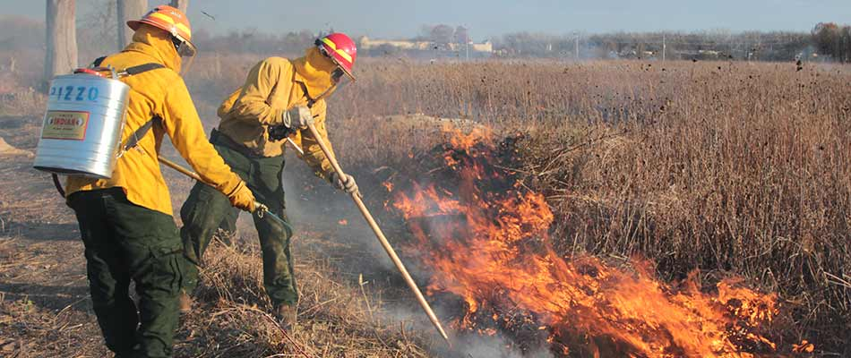 Pizzo & Associates, Ltd. clearing brush with a prescribed fire burn near Naperville, IL.