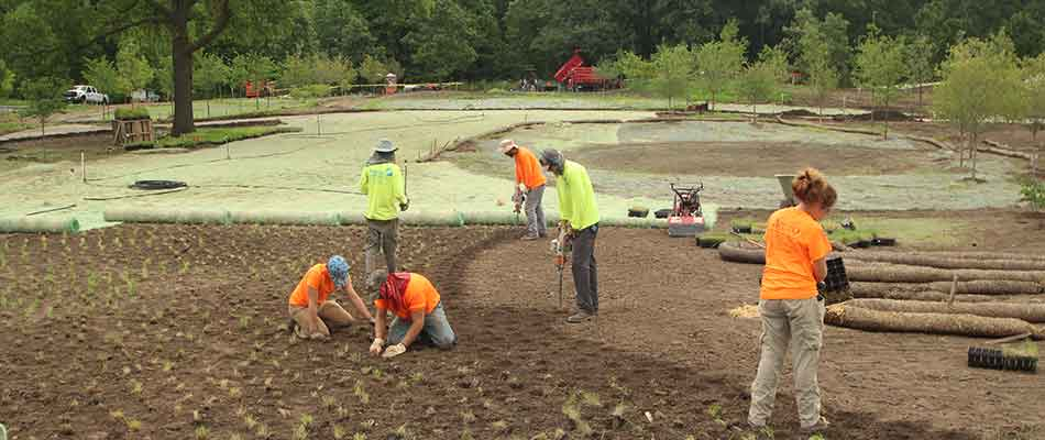 The Pizzo & Associates, Ltd. team installing a natural area landscape in Lake Geneva, WI.
