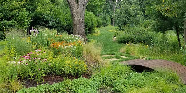 Sustainable landscaping design in Naperville, IL.